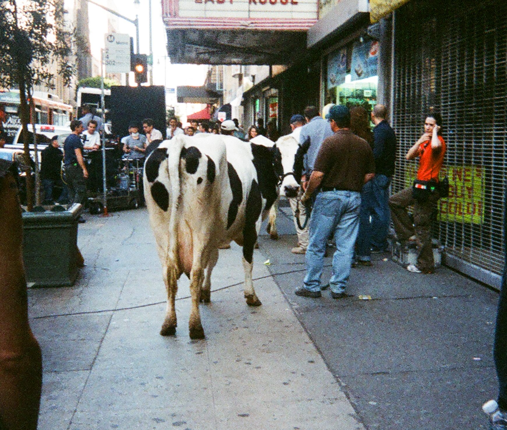On location on Broadway, downtown Los Angeles, for European Arla commercial ''Cow''