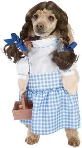 Toto-sized Dorothy Gail