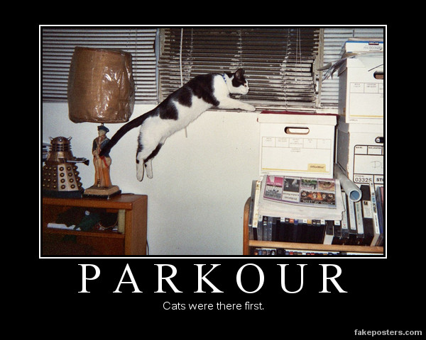 Parkour; Murray